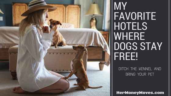 My Favorite Hotels Where Dogs Stay FREE!